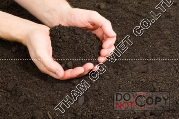 Đất nâu đỏ trồng cây