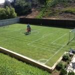 Cỏ sân bóng đá -Loại Cỏ Nào Dùng Trồng Sân Bóng Đá